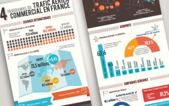 Panorama du trafic aérien en France
